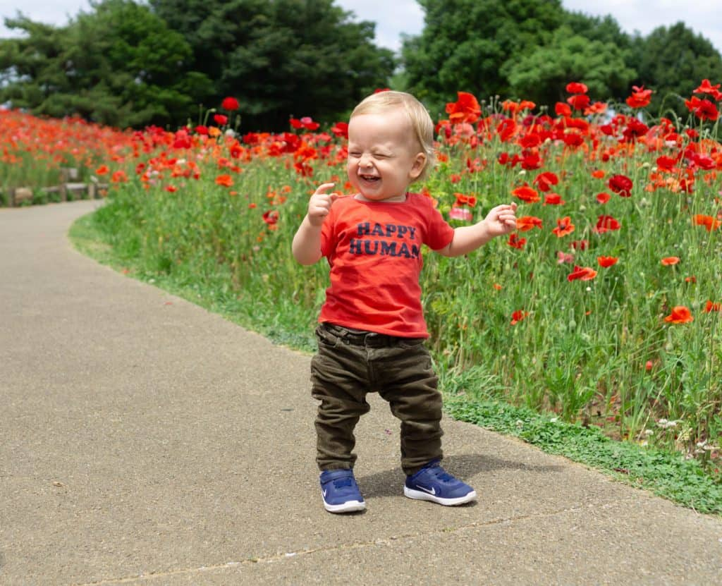 "A photo of a smiling baby standing in front of a field of red flowers with a shirt on that says ""Happy Human"""