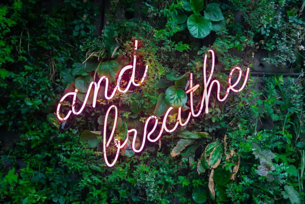 "A photo of a neon sign that says ""Just Breathe"""