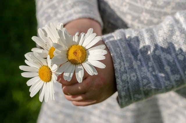 An image of a young lady with daisies ready give them to God.