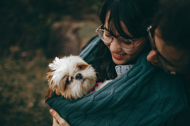 An image of a couple holding a dog.  All Photos by Helena Lopes from Pexels